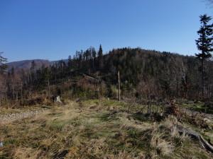 Beskid Węgierski